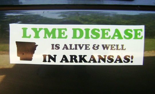 LYme bumper sticker